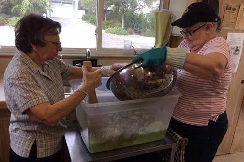 Women making cucumber salad.